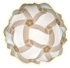 IQ Light