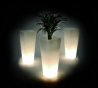 Qui est Paul - Translucent light planter